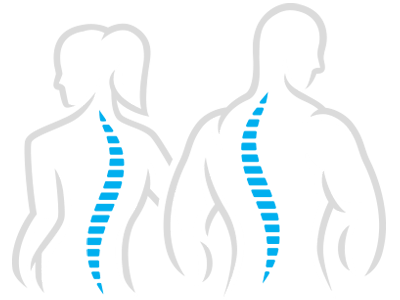 Spine-figures.png